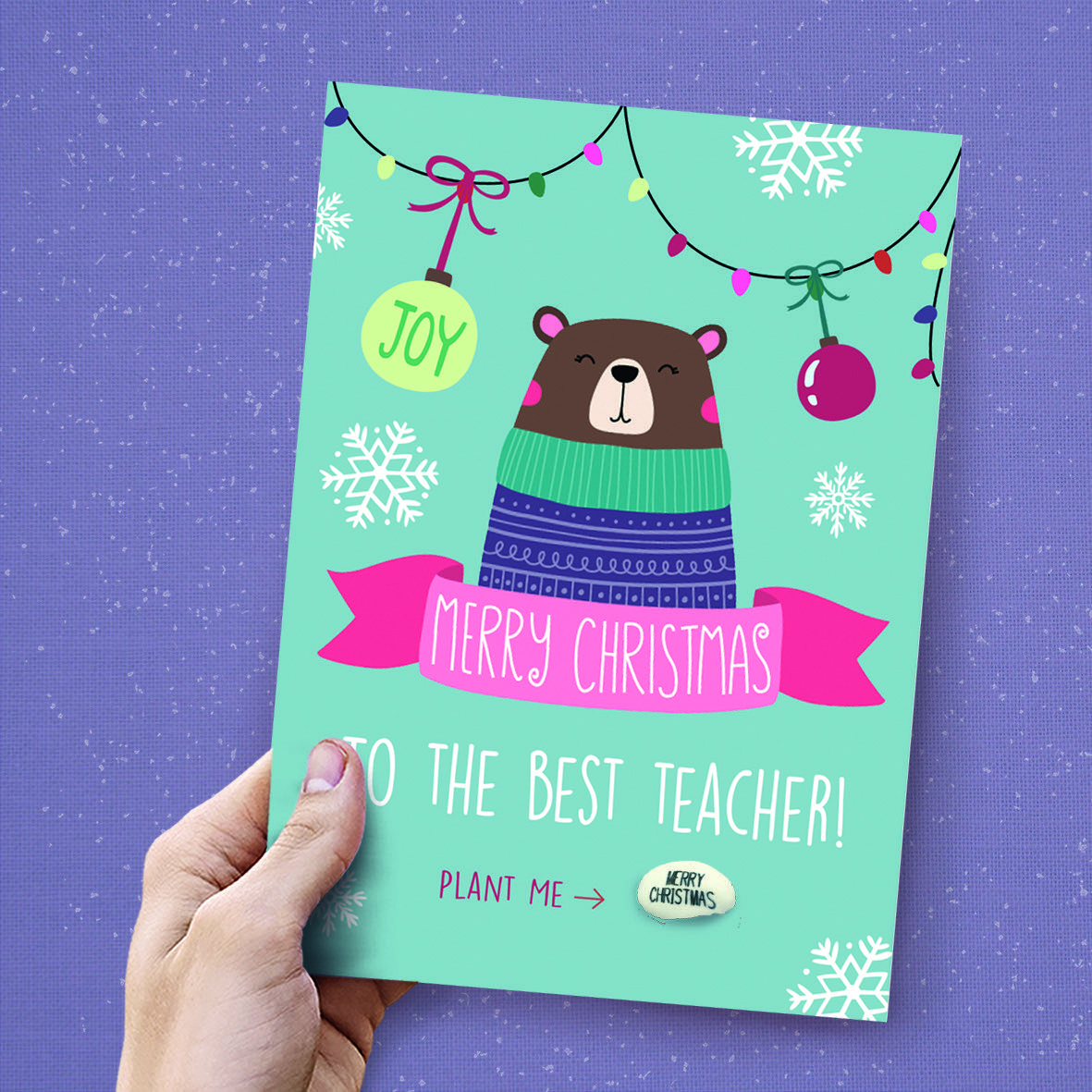 Festive designs and Christmas Cards by Lucy and Lolly