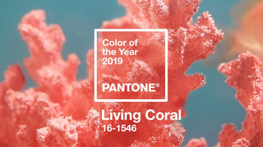 Living coral - pantone colour of the year