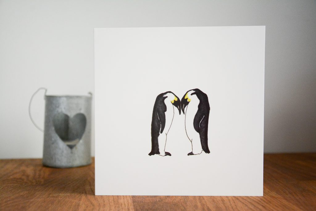 Amy Frank illustrated monochrome penguin cards - printed by printed.com